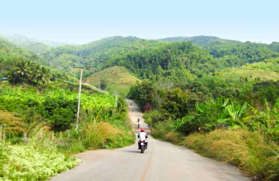 Fahrt mit dem Motorrad durch grüne Wälder in Thailand